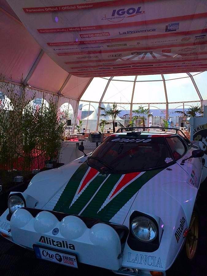 Les palmiers de grandes tailles sont particulièrement intéressants pour les tentes hautes.
