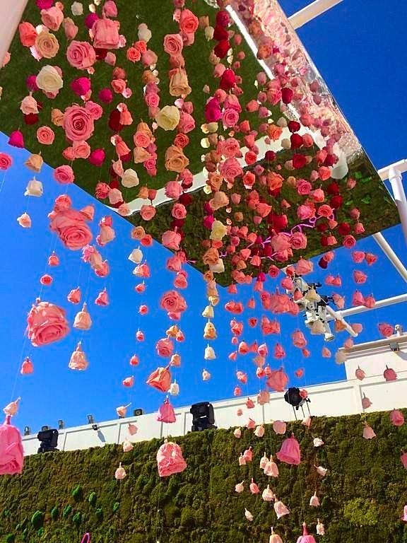 ce plafond de roses naturalisées est composé de plus de 500 roses sur fil transparent