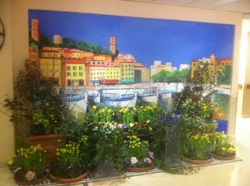 Abonnement d cor de vitrine location de plantes en bacs - Contrat location meuble courte duree ...