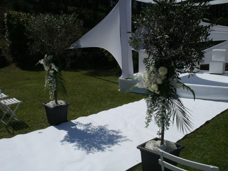Allee nuptiale mariage aix marseille aubagne salon de for Salon de provence marseille