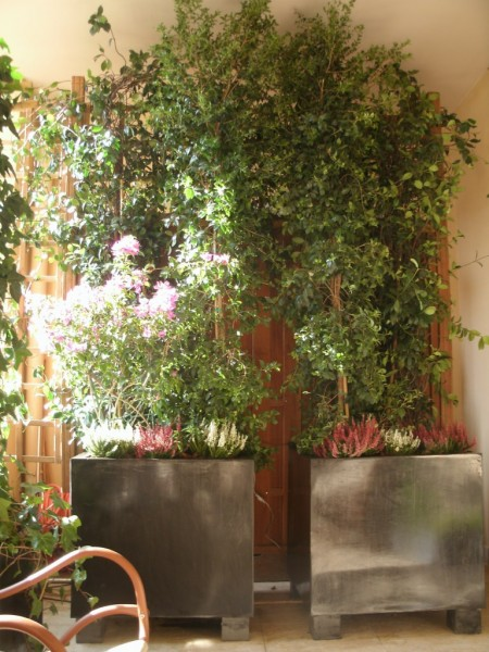 Cr ation de jardin en terrasse suspendue paysagiste - Distance salon de provence aix en provence ...