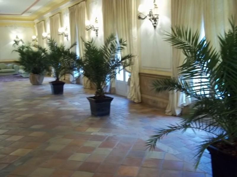 Très location de plantes et bacs décoratifs pour salle de réception  SE88