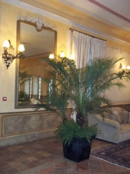 Location Plantes Reception Mariage Gala Soiree Paca Marseille Var