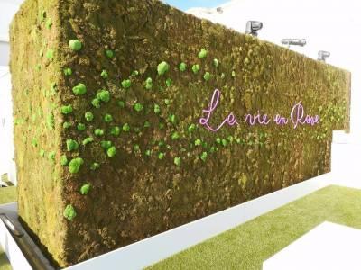 la mise en lumière par le sol et par le haut permet de sublimer le mur de végétaux éphémère.