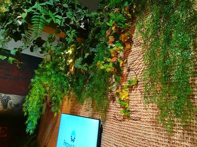 vignes et plantes artficielles à la location pour stand exposition