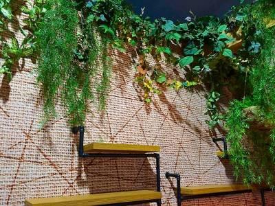 vigne artifcielle pour salon exposition professionnels sur Toulon