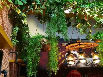création végétale suspendue de plantes à la location pour vos evenements