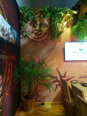 location de palmier phoenix roebelinii pour evenements