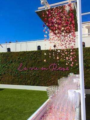 le fond vert du mur de végétaux fait ressortir le plafond de roses naturalisées