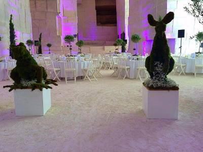 les animaux topiaires sont spécialement créés pour le thème de l'Australie pour le kangourou et la grenouille pour la France.