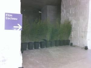 Clorofil Events a été sollicité par les Carrières de Lumières aux Baux de Provence pour décorer les espaces réceptifs de l'inauguration du nouveau site.
