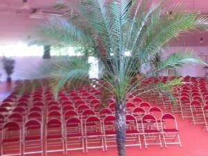 location de plantes et bacs décoratifs  pour évènements, salons, seminaire, soirées, gala, aix en provence marseille avignon et  PACA