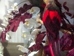décoration de stand pour salon du mariage de Vitrolles et Salon du mariage de Salon de Provence