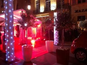 Location de plantes palmiers pour inauguration de commerce et entreprise Marseille Avignon
