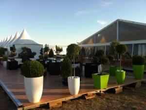 location plantes et pots pour anniversaire entreprise sur Marseille Avignon