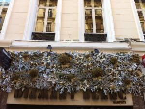Décor de vitrine et façade de noël à Marseille