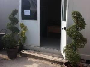 plantes arbustes palmiers en location avec livraison sur paca Toulon Cannes Fréjus