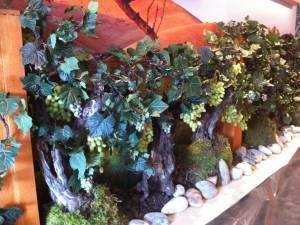 Ceps de vignes et raisins artificiels pour mise en scène à la location pour salon exposition en paca