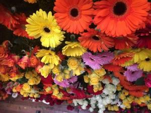 mur de végétaux et de fleurs fraîches pour événement éphèmères Marseille