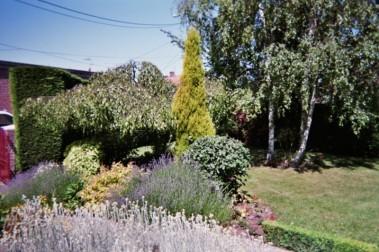 création de jardin espace vert paysagiste avignon salon de provence aix en provence paca