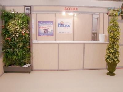 Création de mur végétal éphémère pour salon exposition