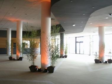 Location avec montage et d montage de plantes pour d cor - Hsbc salon de provence ...