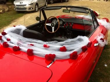 célosie rouge sur tulle pour la plage arrière de la voiture des mariés